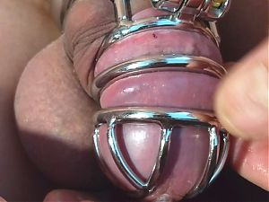 sissy sounds herself in a shiny metal cock cage